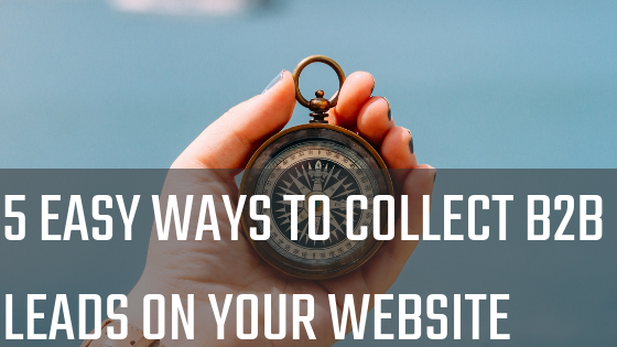 5 Easy Ways to Collect B2B Leads On Your Website